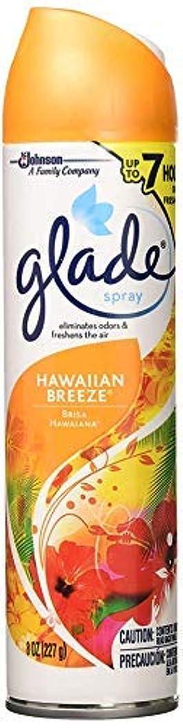 みなすナインへ逸話ジョンソン グレードスプレー ハワイアンブリーズ