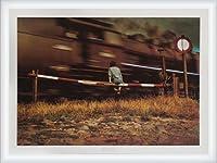 ポスター ヤン ソーデック 1988年 額装品 ウッドハイグレードフレーム(ホワイト)