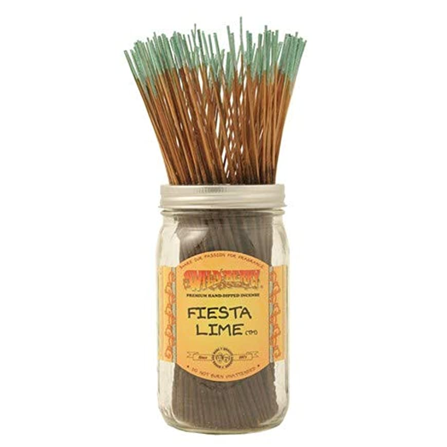 民主主義戸棚少しFiesta Lime - 100 Wildberry Incense Sticks by Wild Berry