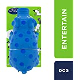 Total Care Oinker Dog Toy