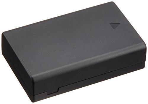 PENTAX リチウムイオンバッテリー D-LI109 39096