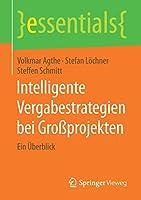 Intelligente Vergabestrategien bei Grossprojekten: Ein Ueberblick (essentials)