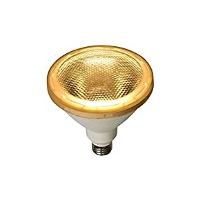 ELPA LED電球 ビーム球形 1000ルーメン E26 電球色 LDR15L-M-G051