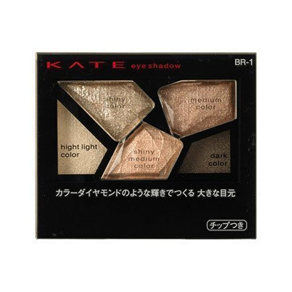 湿原カード有効化【カネボウ】ケイト カラーシャスダイヤモンド #BR-1 2.8g