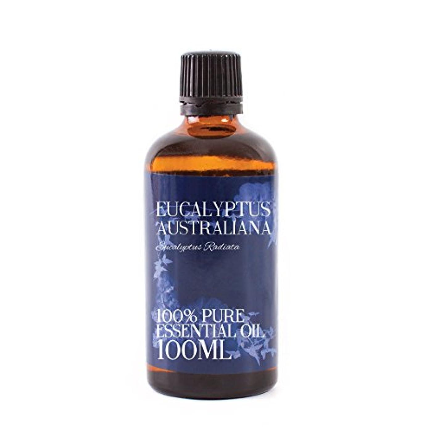 近傍不毛の子音Mystic Moments | Eucalyptus Australiana Essential Oil - 100ml - 100% Pure