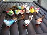 楽園の鳥【インテリア バード 全長9~13cm】1羽★色の指定は出来ません