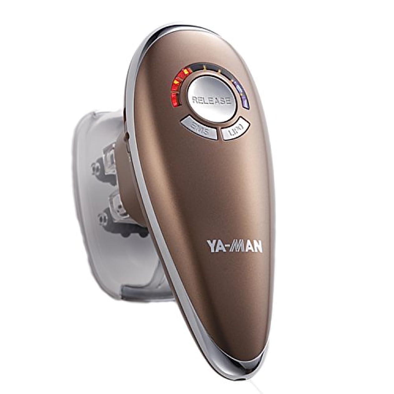 範囲空気感度YA-MAN(ヤーマン) ダイエット アセチノリポボディスリムEX ブロンズ セルライト マッサージ ボディ バスト IB30T