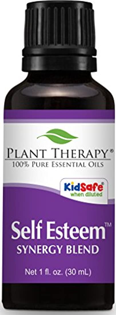 識別する提供された特権植物セラピー自尊心シナジーエッセンシャルオイルブレンド。 100%ピュア、希釈していない、治療グレード。スプルース、ローズウッド、ブルータンジー&フランキンセンス:のブレンド。 30mLの(1オンス)。