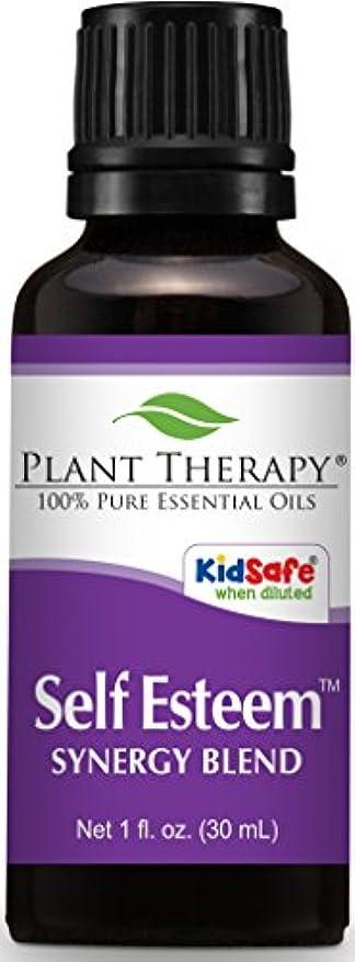 金銭的なドロップ触覚植物セラピー自尊心シナジーエッセンシャルオイルブレンド。 100%ピュア、希釈していない、治療グレード。スプルース、ローズウッド、ブルータンジー&フランキンセンス:のブレンド。 30mLの(1オンス)。