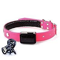 ペット用品 TPUソーラー充電襟 発光ネックロープ usb充電フラッシュ襟 (Color : ピンク, サイズ : Charging (L))