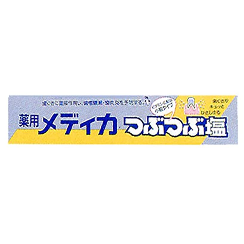 試みるくすぐったい優雅な薬用メディカつぶつぶ塩 170g