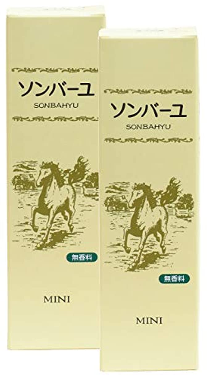 吹きさらし材料シダ薬師堂 ソンバーユミニ 無香料 30ml×2個
