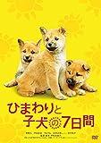 ひまわりと子犬の7日間 [DVD]
