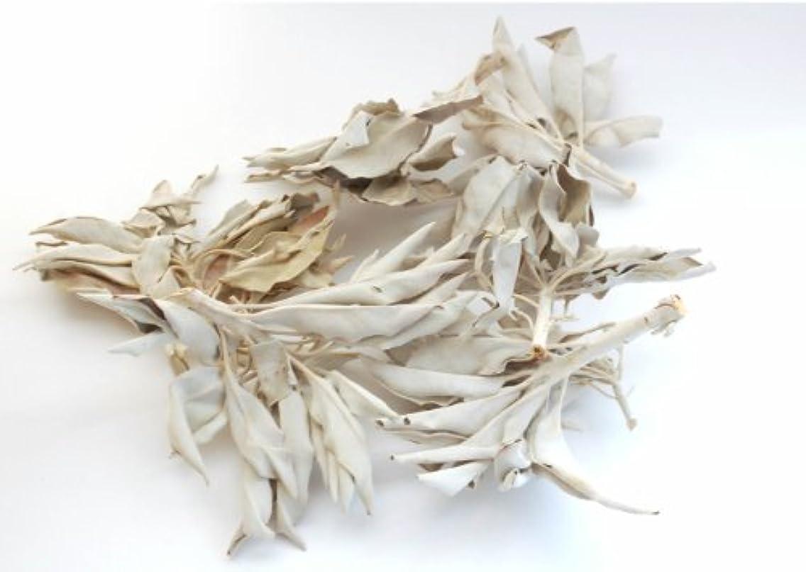 海軍キラウエア山変なセドナのヒーラーの推奨品、ワイルド(野生)ホワイトセージ(無農薬栽培)クラスター45g
