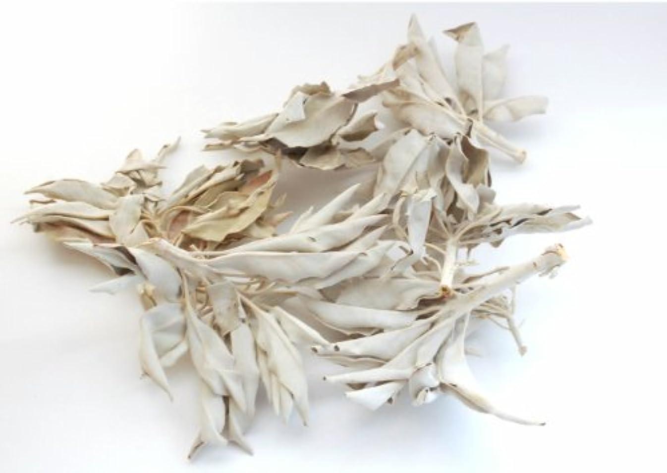 承知しました声を出して脇にセドナのヒーラーの推奨品、ワイルド(野生)ホワイトセージ(無農薬栽培)クラスター45g