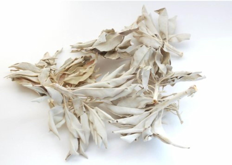 隠囲まれた中にセドナのヒーラーの推奨品、ワイルド(野生)ホワイトセージ(無農薬栽培)クラスター45g
