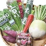 JA全農京都 京野菜 おためしセット 6種類程度