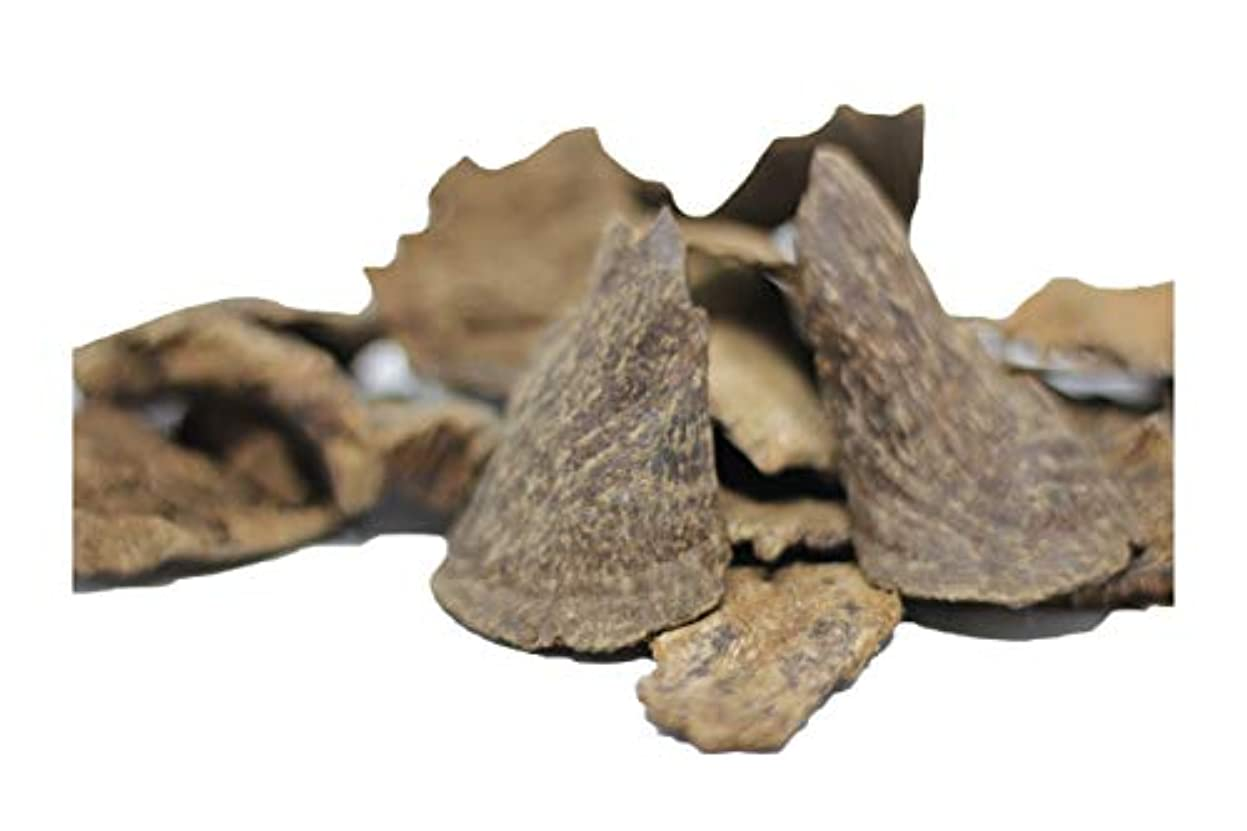 AgarwoodチップOudチップ30グラムピース| 100 %天然and Wild Agarwoodチップ|長持ち24時間アロマ|プレミアム品質| Madeから手PickedベトナムAgarwood | Pure and...