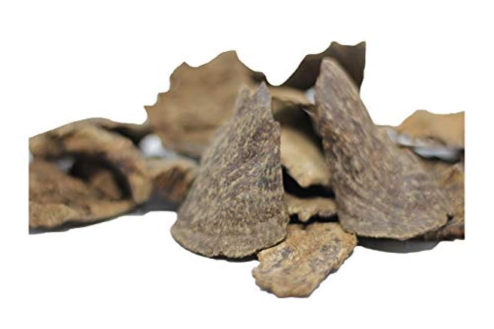 親指栄光のルアーAgarwoodチップOudチップ30グラムピース| 100 %天然and Wild Agarwoodチップ|長持ち24時間アロマ|プレミアム品質| Madeから手PickedベトナムAgarwood | Pure and raw Grade A + +