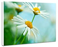 壁掛け式ポスター ノウフレーム絵画 部屋インテリア絵画(40cmx30cmx2.5cm)花の写真 - ホワイトデイジーの花(002)
