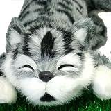 笑い転げる猫 グレー