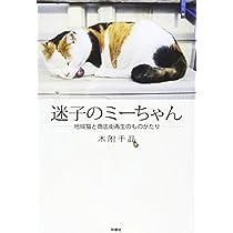 迷子のミーちゃん~地域猫と商店街再生のものがたり~