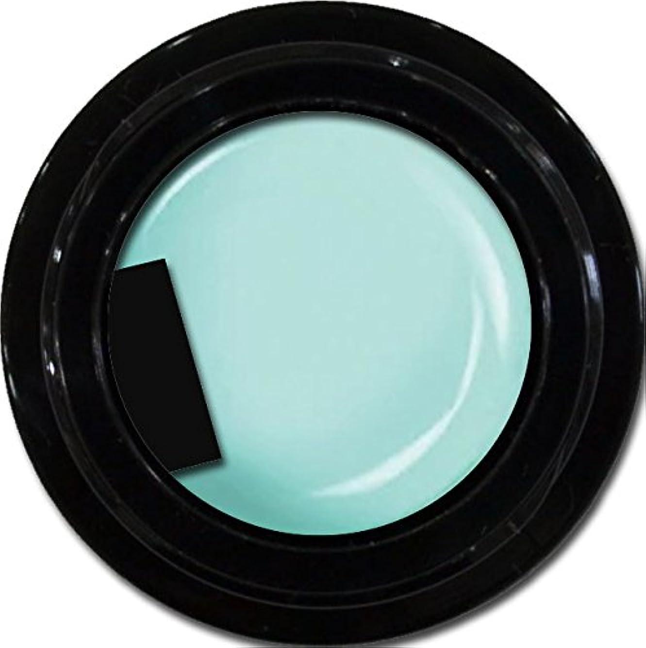 役に立つ飲料と闘うカラージェル enchant color gel M704 SianBlue 3g/ マットカラージェル M704 サイアンブルー 3グラム