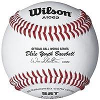 DixieユースリーグBaseballsからウィルソン – ケースof 10ダース