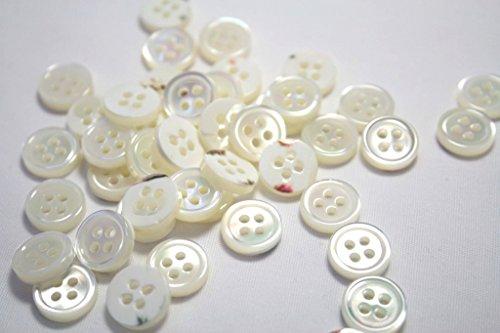 【肉厚高級】17型高瀬貝ボタン11.5mm天然貝ワイシャツボ...