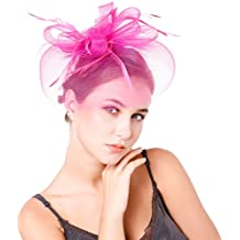 Preferhouse Women's Feather Fascinators Veil Flower Mesh Head Piece for Party