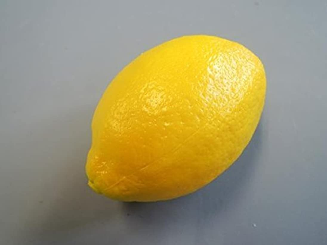 かんがいプレゼンターもろい日本職人が作る 食品サンプル レモン IP-352