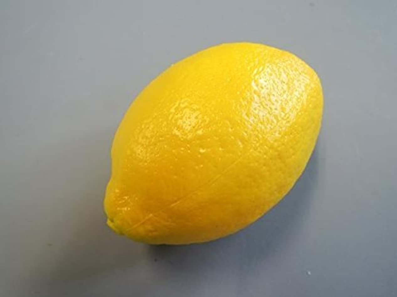 スキル審判受け取る日本職人が作る 食品サンプル レモン IP-352