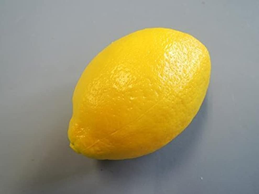 消費するファセットカーテン日本職人が作る 食品サンプル レモン IP-352