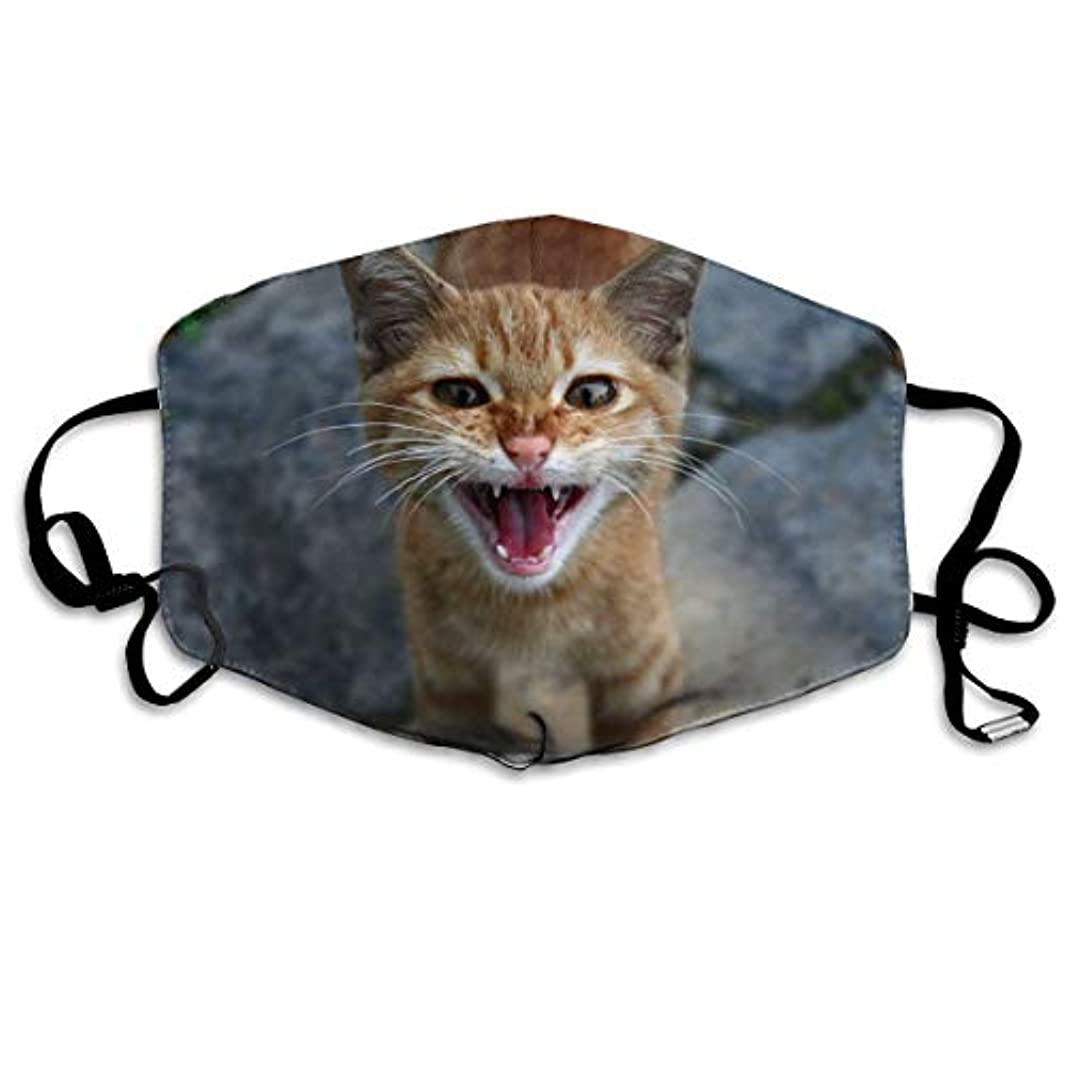 悪行適応スキャンダルAxiongsd Uvカットマスク 洗える かわいい 自転車 マスク黒 ピンク Cat-in-act-1-1561737-1920x1275
