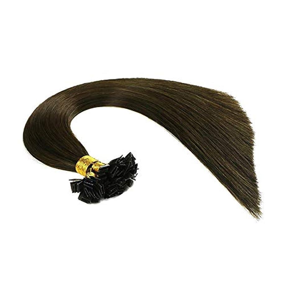 ピラミッドサイクロプス染色WASAIO ナノリングヘアエクステンションブラジルヒトクリップUnseamed髪型交換用の変更のスタイル (色 : Photo color, サイズ : 12 inch)