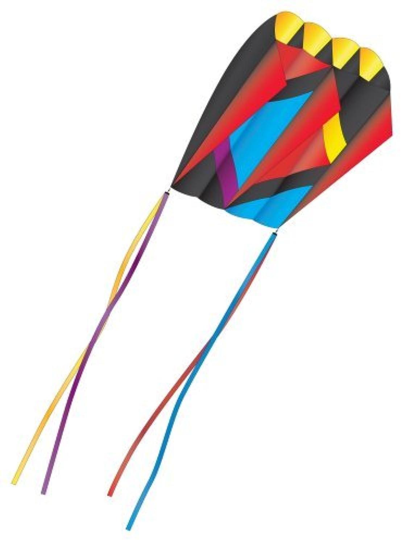 3D Nylon Kite: Parafoil by X-Kites [並行輸入品]
