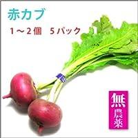 【赤かぶ(1~2個)× 5袋】栃木県産無農薬栽培。