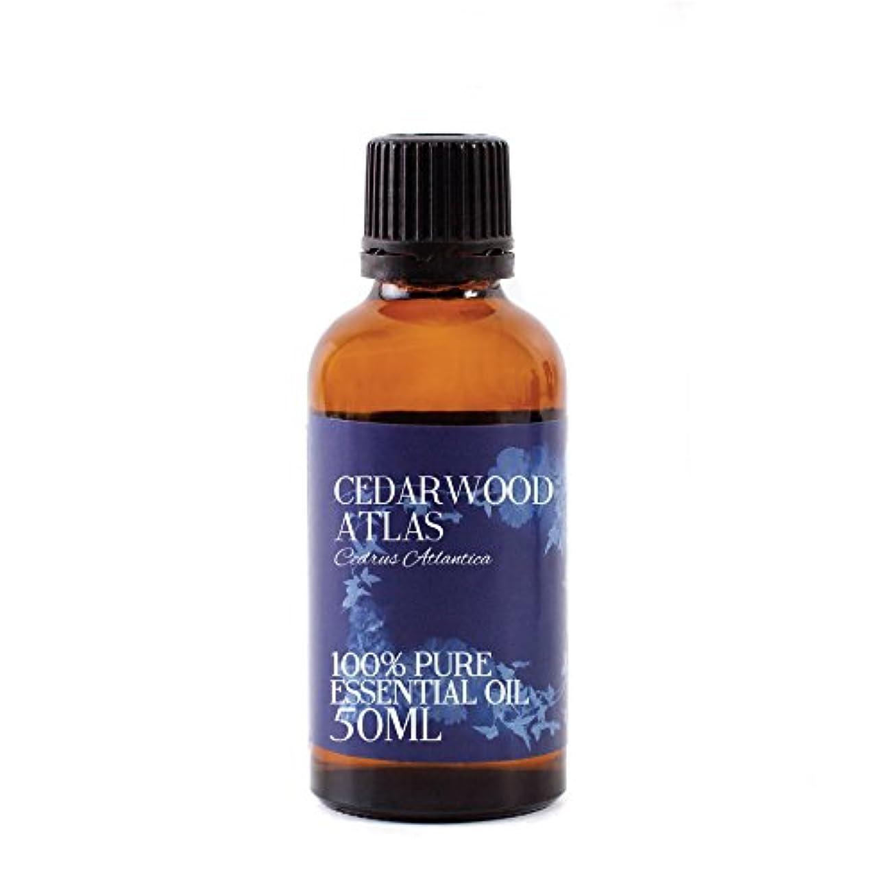 抱擁最小化する未就学Mystic Moments   Cedarwood Atlas Essential Oil - 50ml - 100% Pure