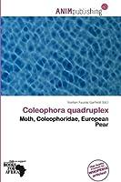 Coleophora Quadruplex