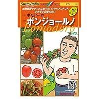 トマト 種【ポモドーロ ボンジョールノ 】小袋(15粒)