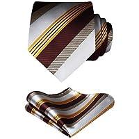 HISDERN Business Ties for Men Silk Plaid Check Tie Handkerchief Wedding Party Necktie & Pocket Square Set