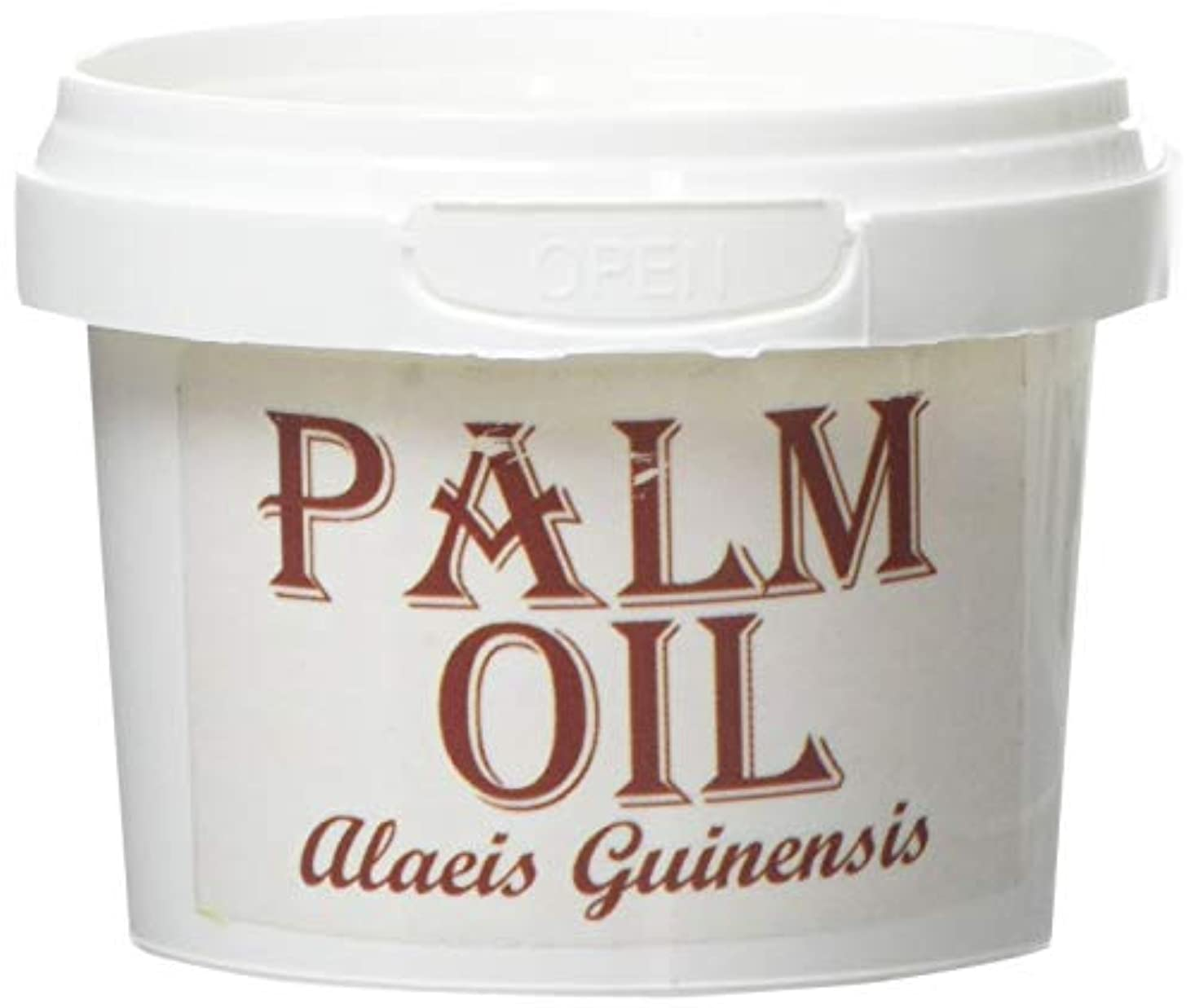 ジャーナル操作支店Mystic Moments | Palm Carrier Oil - 100g - 100% Pure - Purchased from RSPO certified source