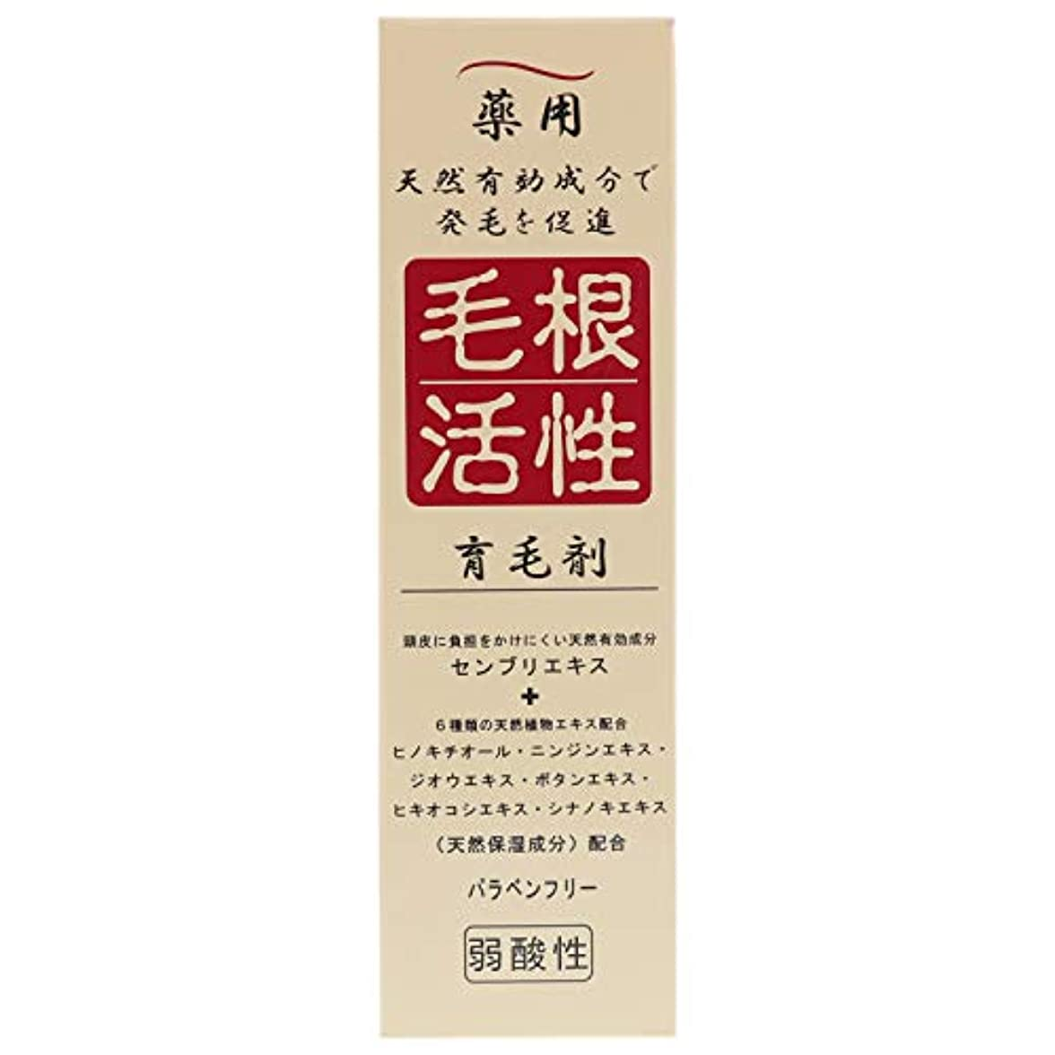 設計図石初心者薬用毛根活性育毛剤 150ml