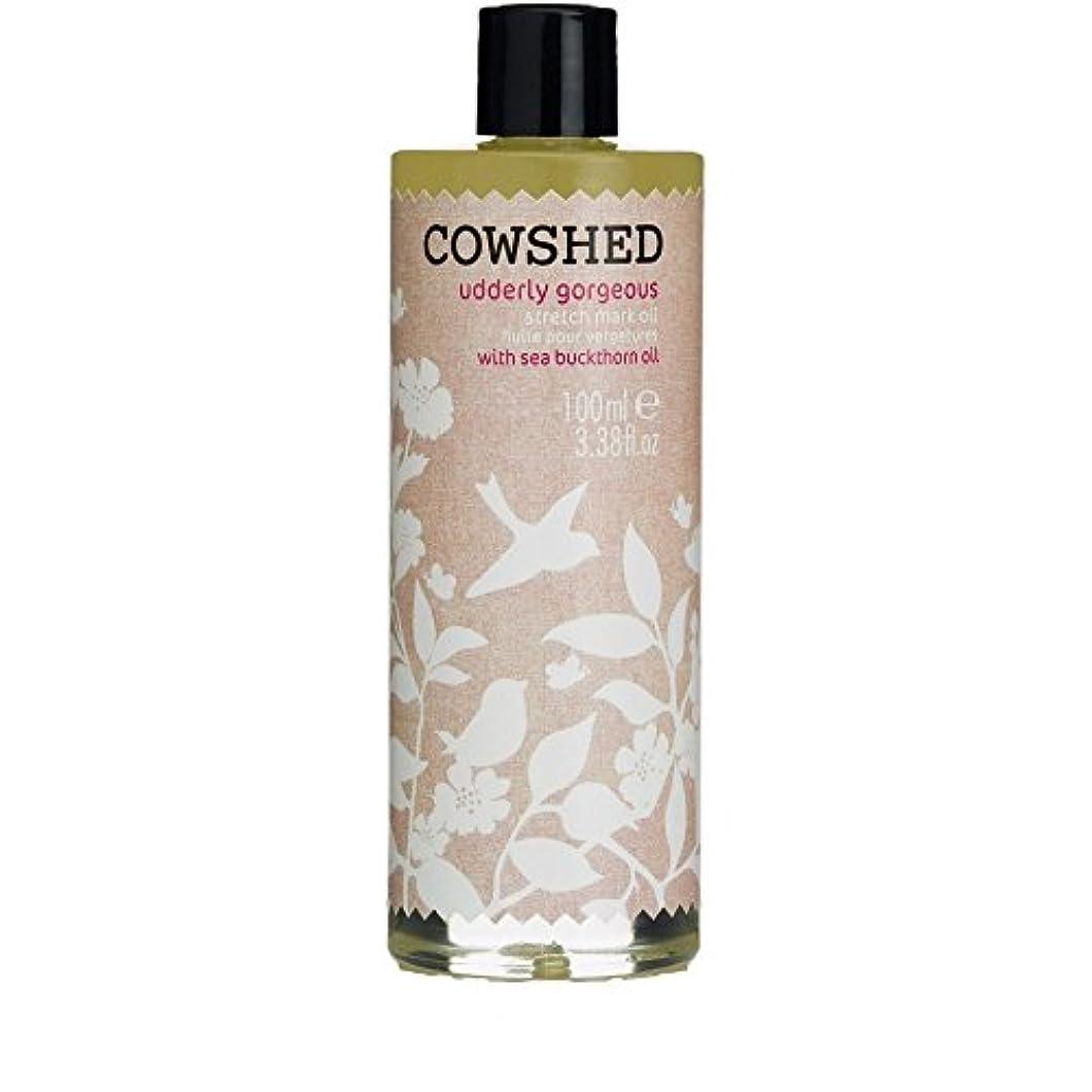取り扱い神経平らにするCowshed Udderly Gorgeous Stretch Mark Oil 100ml - 牛舎ゴージャスなストレッチマークオイル100ミリリットル [並行輸入品]