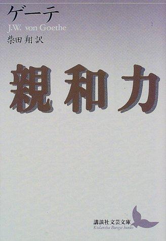 親和力 (講談社文芸文庫)の詳細を見る