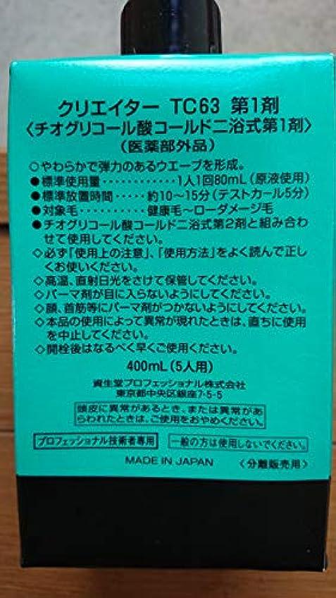 畝間藤色ギネス資生堂 クリエイター TC63(プロ用パーマ液?1剤、2剤各400ml)