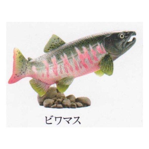 カプセルQ ミュージアム 日本の動物コレクション 5.琵琶湖/母なる古代湖 ビワマス ガチャポン チョコエッグ フィギュア