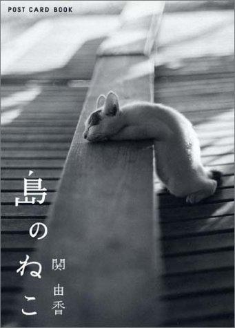 島のねこ—ポストカード (新風舎文庫—Post card book)