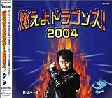 燃えよドラゴンズ!2004