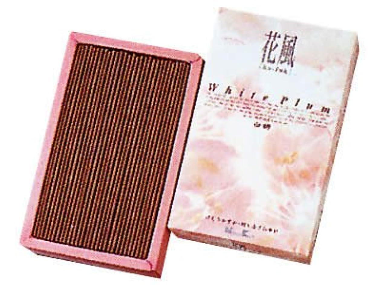 ピンクシーフード乳剤花風 白梅 バラ詰